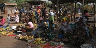 """El Papa hace un """"apremiante llamamiento"""" a la pacificación en Costa de Marfil"""