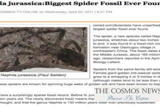 Hallan la mayor araña fosilizada jamás encontrada