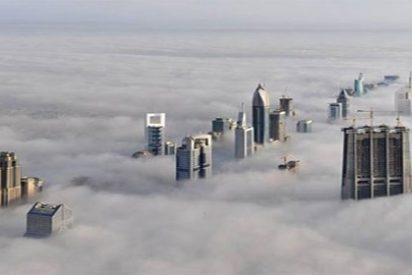 Contra la contaminación de las ciudades, edificios esponja