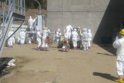 Tepco confirma la fusión parcial de dos reactores nucleares de Fukushima