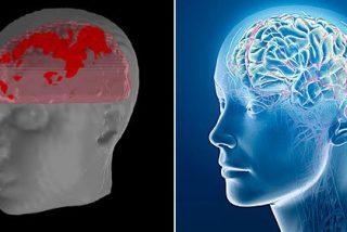 El cerebro adolescente: un mecanismo con acelerador pero sin frenos