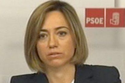 Chacón despeja el camino de Rubalcaba: renuncia a ser la sucesora de Zapatero y candidata del PSOE en las primarias