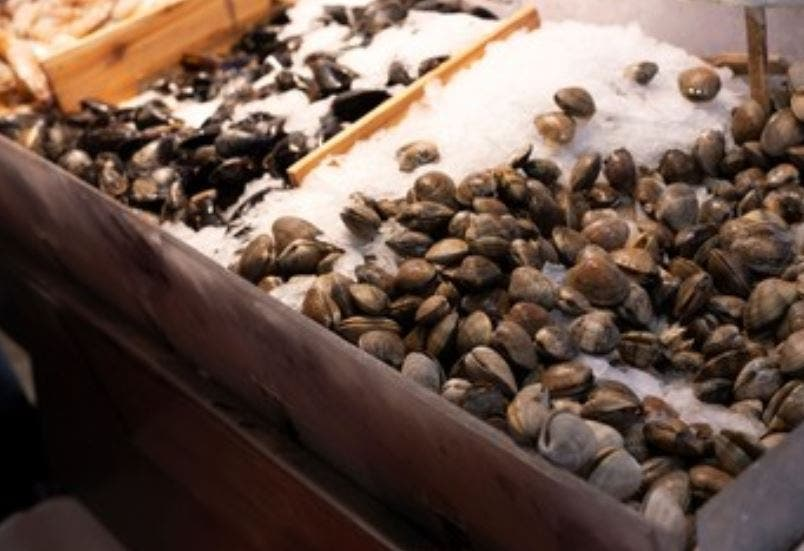 Almejas en el mercado