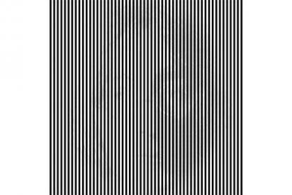 Habrá visto muchas ilusiones ópticas, pero seguro que ninguna tan sorprendente como esta