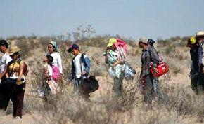 Denuncian un secuestro masivo de 80 inmigrantes en el estado de Veracruz