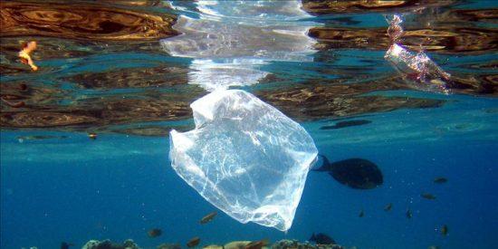 El 90% de las bolsas que consumimos acaba esparcido en campos, playas y mares