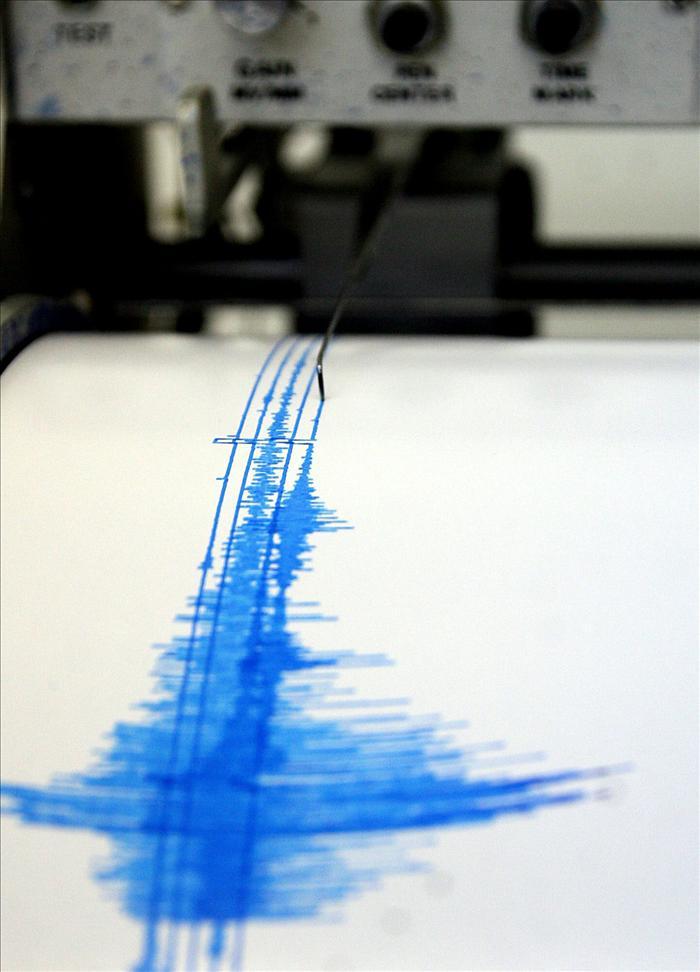 Un terremoto de 5,3 grados sacude la Isla Norte de Nueva Zelanda