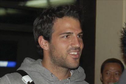 """El Barca, nada nuevo sobre el fichaje de Cesc, solo un """"prudente"""" optimismo"""