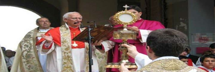 """Cardenal Cañizares: """"Es recomendable que los fieles comulguen en la boca y de rodillas"""""""
