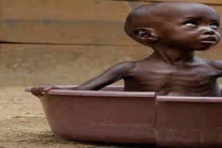"""SOS de los obispos de Somalia: """"Estamos ante el mayor desastre humanitario del mundo"""""""