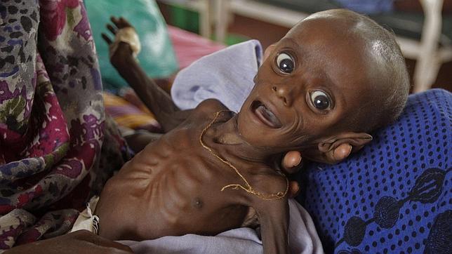 ¿Y qué hacen los musulmanes ricos por los pobres somalíes?