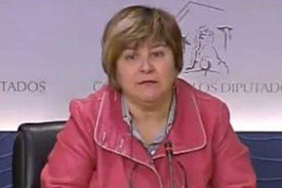 """López i Chamosa: """"Si la ampliación de la edad de jubilación no es protección social, que venga Dios y Pablo Iglesias y lo vean"""""""