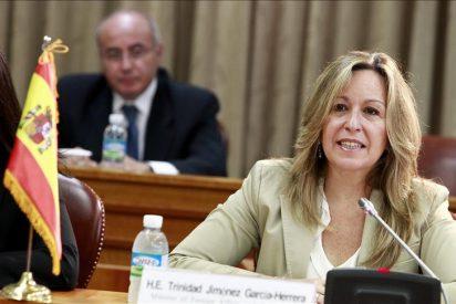 Viendo perdidas las elecciones del 20-N, los altos cargos del Gobierno del PSOE entonan el 'sálvese quien pueda'