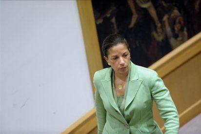 EEUU quiere que el Consejo de Seguridad aumente su presión contra Al Asad