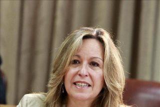 El PP pide a Trinidad Jiménez que apoye a la oposición a Chávez
