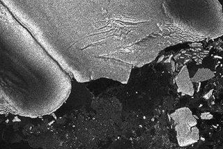 El tsunami de Japón desprendió icebergs de la Antartida