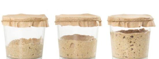 Cómo hacer masa madre para pan casero: 2 recetas fáciles 🍞