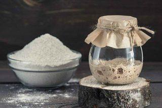 Cómo hacer masa madre para pan casero