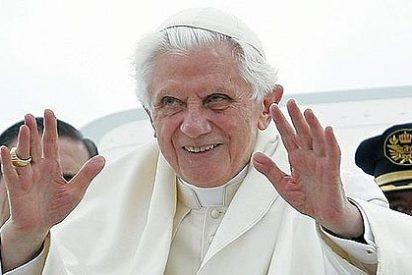 ¿Por qué se quiere tanto al Papa?