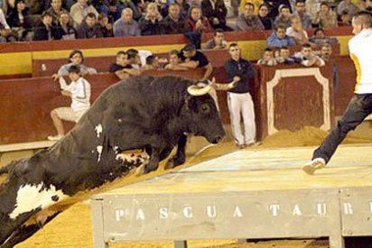 Muere un joven corneado por un toro que ya mató a otras dos personas