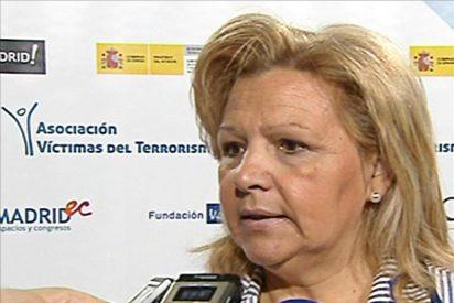 """La AVT considera este año """"el más dramático"""" en la lucha judicial contra ETA"""