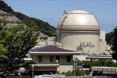 El Gobierno japonés espera reconectar pronto los reactores paralizados tras el tsunami