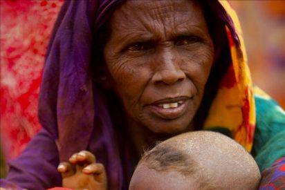 Una exposición sensibiliza sobre la hambruna en el Cuerno de África