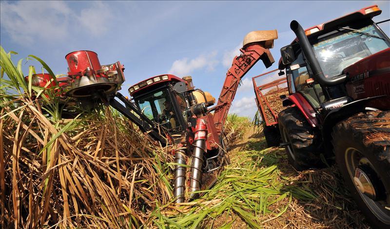 Raúl Castro suprime el ministerio del Azúcar y crea un grupo empresarial