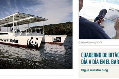 El catamarán ecológico finaliza campaña por el Mediterráneo