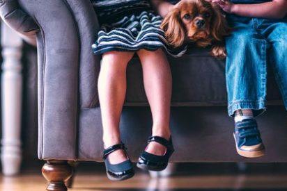 Consejos para elegir el calzado de los niños