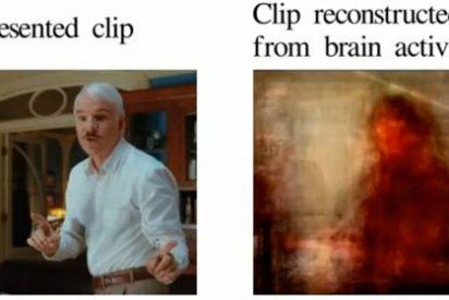 Los científicos publican en Youtube cómo ve el cerebro las cosas