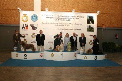Durante dos días más de 12.000 personas pudieron ver las exposiciones caninas