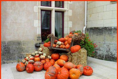 Prepara tu Halloween 2011
