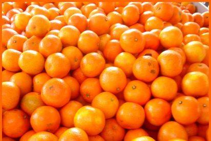 Postres infernales: flanecitos de clementina y calabaza