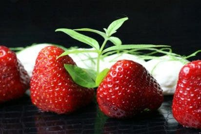 Las fresas protegen tu estómago del exceso de alcohol