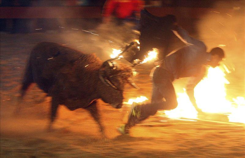 El toro jubilo de Medinaceli quiere ser patrimonio cultural de UNESCO