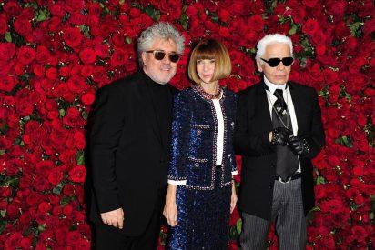 El MoMA reconoce y rinde tributo a Pedro Almodóvar por trayectoria artística