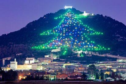 El Papa encenderá el árbol de Navidad más grande del mundo con un iPad