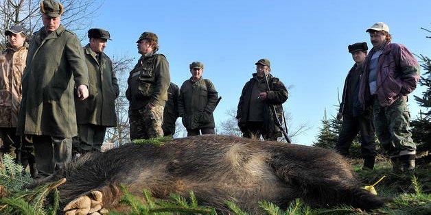 Fallece un cazador de 76 años por un disparo fortuito de su propia arma