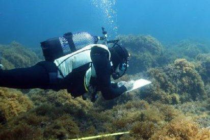 Griegos y romanos ya contaminaban el fondo marino hace 2.800 años