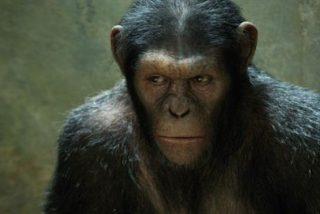 Conozca a Andy Serkis, el actor que mejor interpreta a los animales
