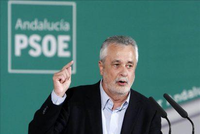 """Griñán admite que el PSOE-A tendrá que hacer un """"esfuerzo titánico"""" para ganar"""