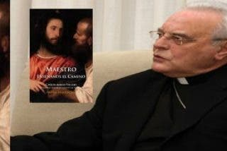'Maestro, enséñanos el camino', nuevo libro del cardenal Amigo