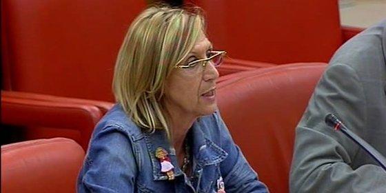 Rosa Díez quiere reabrir el sumario del 11-M por 'falta de indicios'