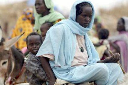 El jefe de observadores en Siria, acusado de crímenes en Sudán
