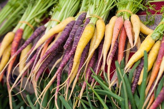 variedad de zanahorias
