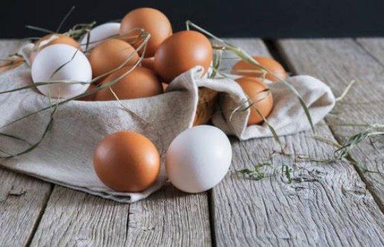 os, 7 recetas fáciles conhuevos