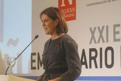 Barcina anuncia que el Gobierno foral subirá el IRPF en Navarra