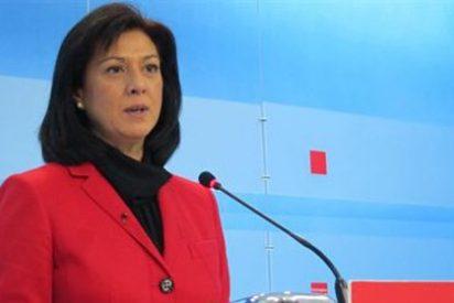 El PSOE de Extremadura celebra la candidatura de Carme Chacón