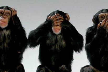 ¿Por qué no movemos las orejas? ¿Mienten los animales?